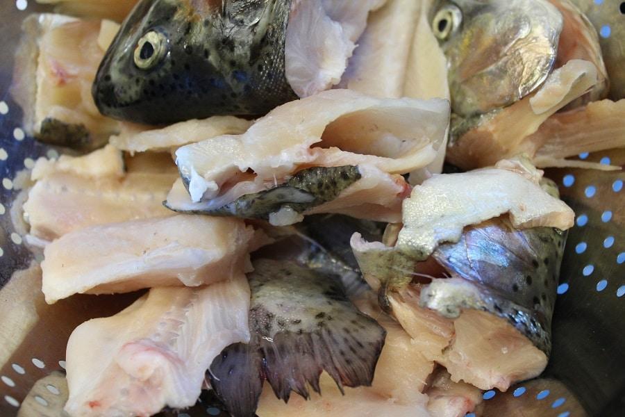 Fischkarkassen