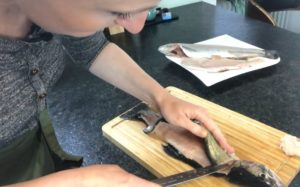 Forelle Filetieren