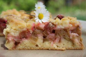 Rhabarberkuchen mit Streusel-Beitragsbild-Rezept-die frau am grill-web
